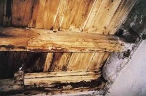 02 c restauro e conservazione for Piccola casa costruita su fondamenta