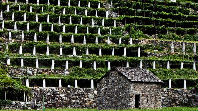 Il terrazzamento - Restauro e Conservazione