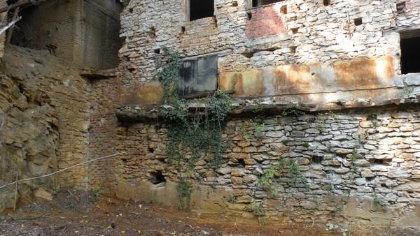 restauroeconservazione-vegetazione-infestante-su-muratura-in-pietra