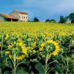 Osservatorio nazionale del paesaggio rurale