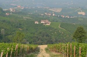Sentieri-Mulattiere-Capezzagne-7