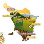 Le eccellenze rurali in Italia: uno sguardo alle eccellenze toscane