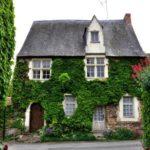 Verde verticale in architettura: quali tipologie esistono?