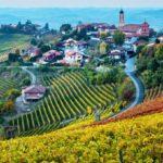 Un bando per la valorizzazione del distretto Unesco piemontese