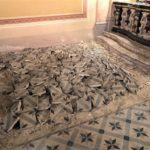 Proseguono i lavori di restauro nella Chiesa della Madonna ad Oviglio