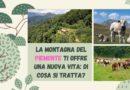 La montagna del Piemonte ti offre una nuova vita: di cosa si tratta?